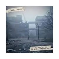 "AUTONOMADS ""One Day This Will All Be Gone... Everything Now!"" LP (uszkodzona okładka)"