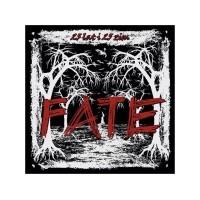 """FATE """"25 lat i 25 zim"""" LP+CD (redvinyl)"""