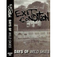 "EXIT CONDITION ""Days Of Wild Skies"" CASS"