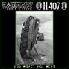 AGATHOCLES / H.407-Split LP