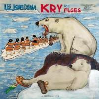 """UZ JSME DOMA """"Kry – Floes"""" LP"""