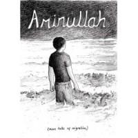 Aminullah [Carrie McKinnon] – komiks