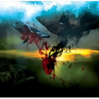 """A STORM OF LIGHT """"And We Wept The Black Ocean Within"""" 2xLP"""