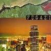 """FUGAZI """"End hits"""" LP"""