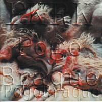 """PKRK """"Pogo braque"""" CD"""